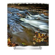 Autumn Leaves In Water II Shower Curtain