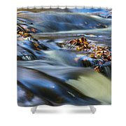Autumn Leaves In Water IIi Shower Curtain