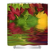 Autumn Leaves In Water With Reflection Shower Curtain
