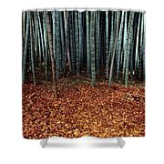Autumn Leaves Litter The Ground Shower Curtain
