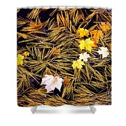 Autumn Leaves On Straw On Water Shower Curtain