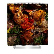 Autumn Leaves On The Moss Shower Curtain