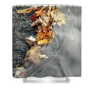 Autumn Leaves Tiny Dam Shower Curtain