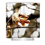Autumn Leftovers Shower Curtain