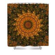 Autumn Mandala 1 Shower Curtain