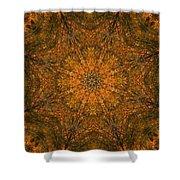 Autumn Mandala 2 Shower Curtain