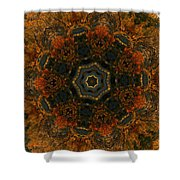 Autumn Mandala 5 Shower Curtain
