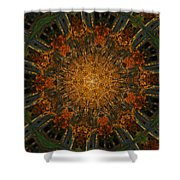 Autumn Mandala 6 Shower Curtain