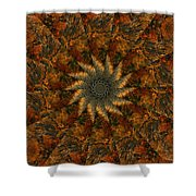 Autumn Mandala 7 Shower Curtain