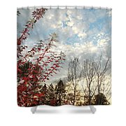 Autumn Maple And Sky Shower Curtain