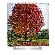 Autumn Maple Emphasized Shower Curtain