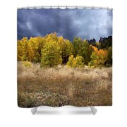 Autumn Meadow Shower Curtain by Carol Cavalaris