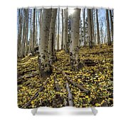Autumn Memoirs  Shower Curtain