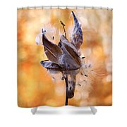 Autumn Milkweeds Shower Curtain