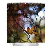 Autumn Mystere Shower Curtain