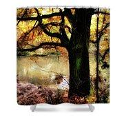 Autumn Oak Tree Shower Curtain