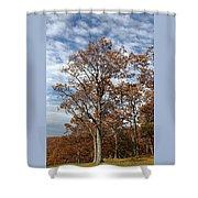 Autumn Oaks White Clouds Shower Curtain