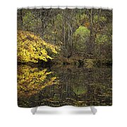 Autumn On The Pond Shower Curtain