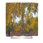 Autumn Picnic Spot Shower Curtain