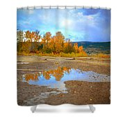 Autumn Puddles Shower Curtain