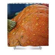Autumn Rain Drops Shower Curtain