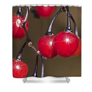 Autumn Red Berry Sparkle Shower Curtain