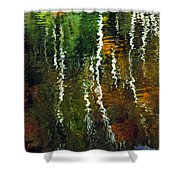 Autumn Reflections 1 Shower Curtain