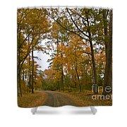 Autumn Road Colors Shower Curtain