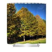 Autumn Row Shower Curtain