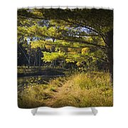Autumn Scene Of The Little Manistee River In Michigan No. 0882 Shower Curtain