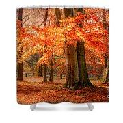 autumn skirt I Shower Curtain