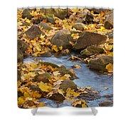 Autumn Slipping Away 0437 Shower Curtain
