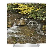 Autumn Stream 6149 Shower Curtain