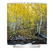Autumn Stream II Shower Curtain