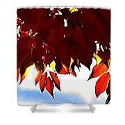 Autumn Sun Glory Shower Curtain