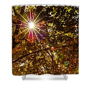 Autumn Sunburst Shower Curtain by Carolyn Marshall
