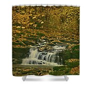 Autumn Surrounded In Color Shower Curtain