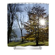 Autumn Tree In Backlight Shower Curtain