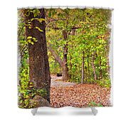 Autumn Walk - Impressions Shower Curtain
