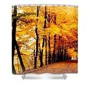 Autumn Walk In Belgium Shower Curtain