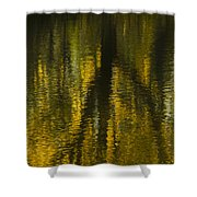 Autumn Water Reflection Abstract I Shower Curtain