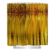Autumn Water Reflection Abstract II Shower Curtain