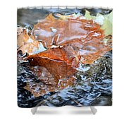 Autumn Waters Shower Curtain