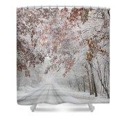 Autumn Wonderland Shower Curtain