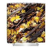 Autumnal Melody Shower Curtain