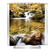 Autumnal Stream Shower Curtain by Mal Bray