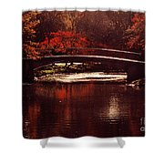 Autumnal Sunshine Shower Curtain by Dana DiPasquale