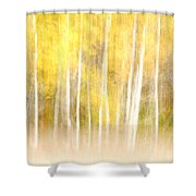 Autumns Abstract Shower Curtain