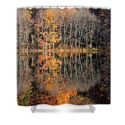 Autumns Art Shower Curtain