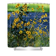 Autumn's Gold At The Lake Shower Curtain
